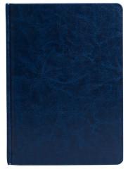 Agenda zilnica Impression A5 albastru A95-02