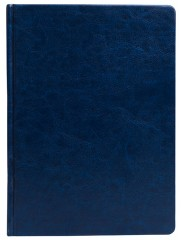 Agenda zilnica Impression medie albastra A95-02